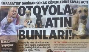 fatih-terim-in-kopek-dusmanligini-yazan-gazeteci-isten-kovuldu-55861-5